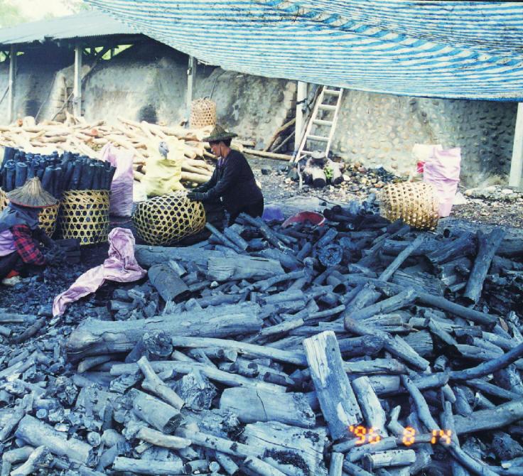 早期只要有山場,就有木炭窯,要看到木炭窯 並不難。