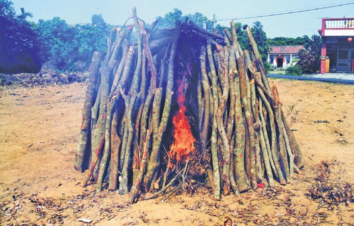 過火是選用相思樹八千斤左右的生木材燒成火炭