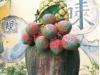 姑山倉庫旁的石塑「鳳梨荔枝」地標(柯武村攝)