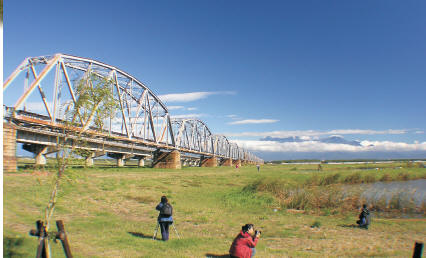舊鐵橋的景色及動植物生態,吸引攝影愛好者前來捕捉鏡頭。〈陳瑚琨攝〉 晨