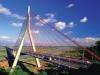 台灣首座複合式斜張橋〈大樹區公所提供〉
