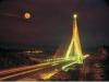 夜間拍攝斜張橋,景色美不勝收。〈大樹圖書館提供〉