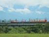 台鐵復興號觀光列車,行駛在新鐵橋上。〈陳瑚琨攝〉
