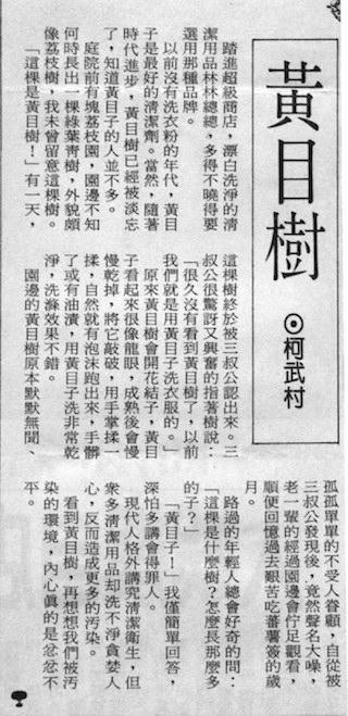 在「台灣時報」發表的《黃目樹》 一文。( 民國85 年九月六日)